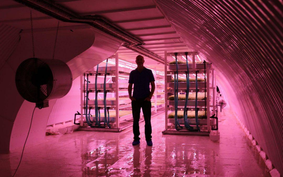"""""""Vertical Farming"""": Gemüse aus dem Bunker"""