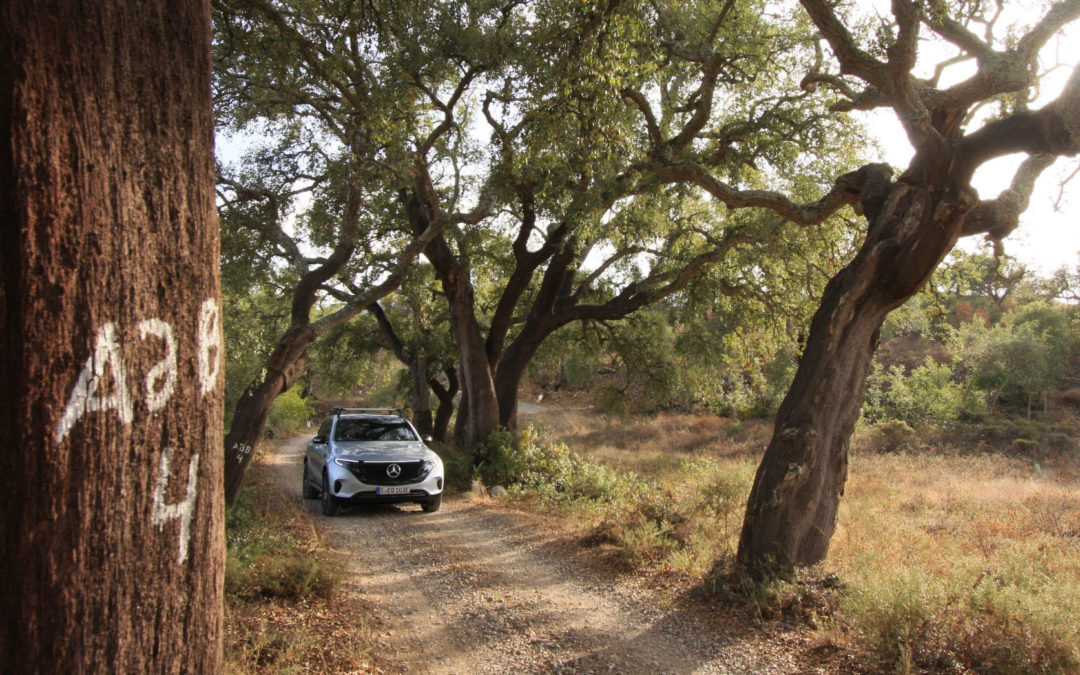 Auf dem Öko-Trip entlang der Algarve