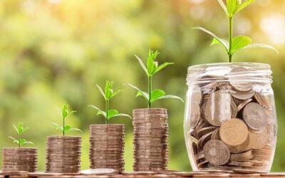 5 Tipps zum Sparen mit Nachhaltigkeit