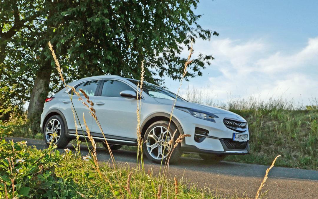 Kia XCeed Plug-in Hybrid: Landsitz mit Stromanschluss
