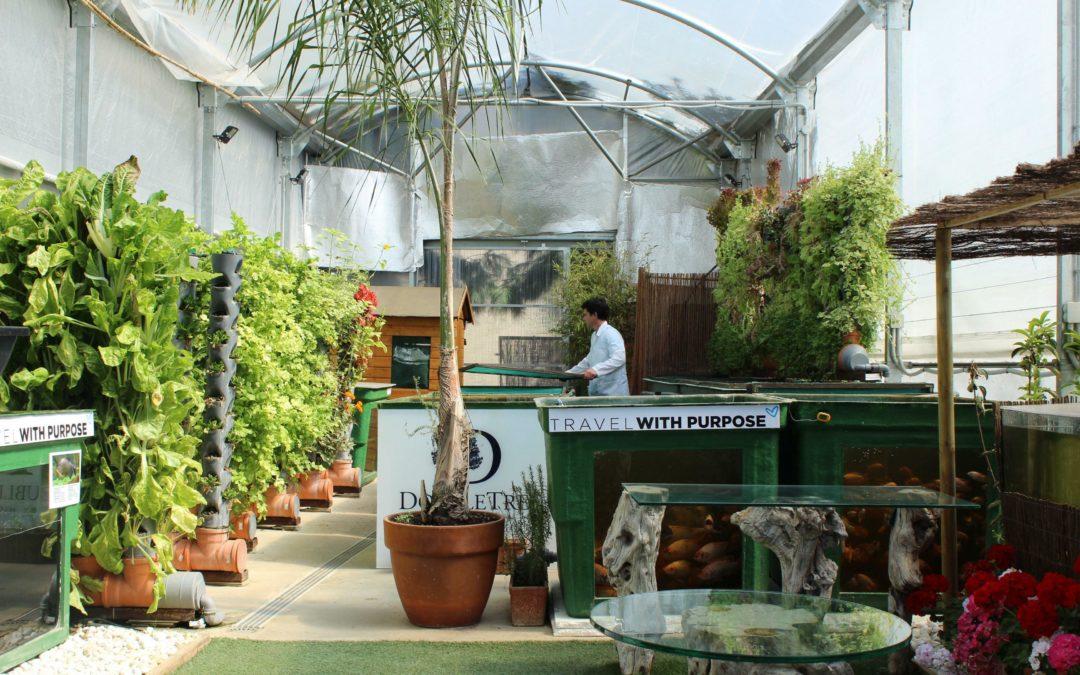 Das Aquaponik-Restaurant von Malaga