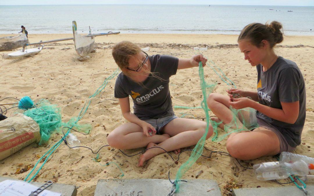 Oceanfarming: Algen und Schwämme für Madagaskar