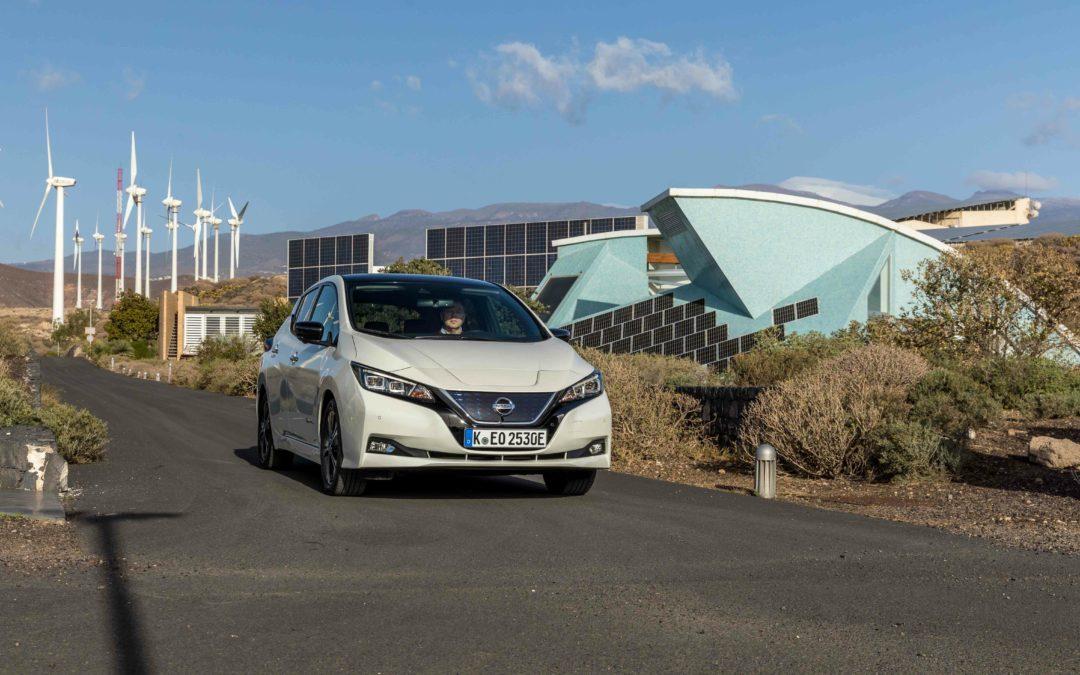 Testfahrt: Waldsterben im neuen Nissan Leaf