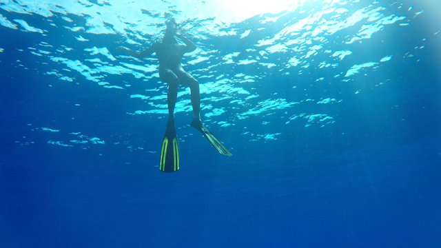 Protest gegen Plastik: Mann durchschwimmt Pazifik
