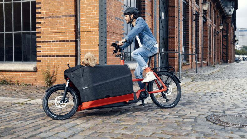 Lastenräder mit elektrischem Hilfsantrieb gibt es mittlerweile für die unterschiedlichsten Einsatzzwecke. Manche Exemplare sind bis zu einem Gesamtgewicht von 300 Kilo zugelassen. Foto: pd-f