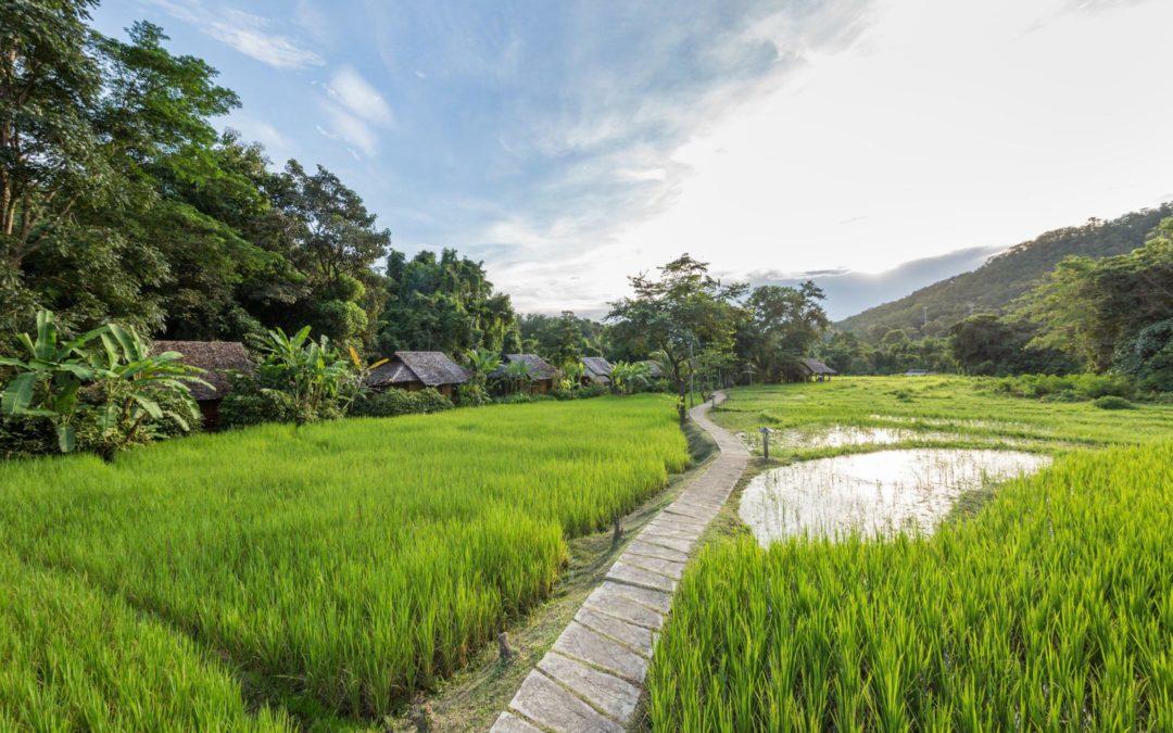 Sanft und grün: Thailands neuer Tourismus