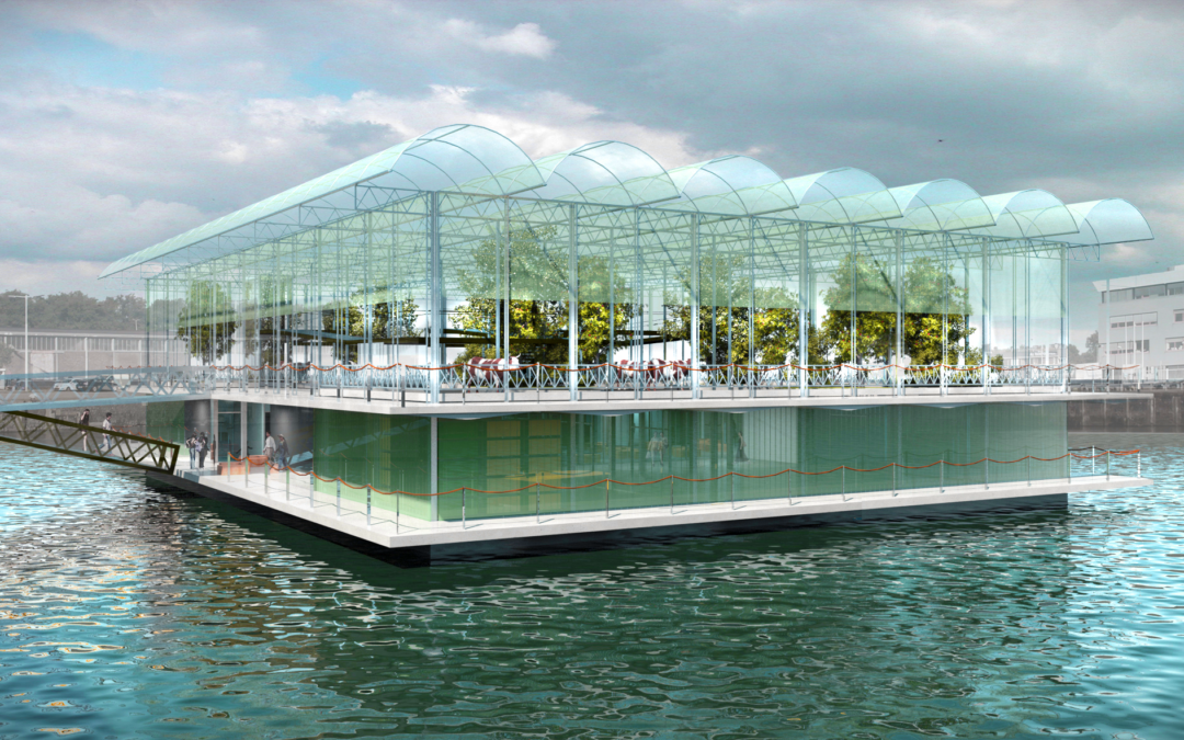 Schwimmende Farm in Rotterdam