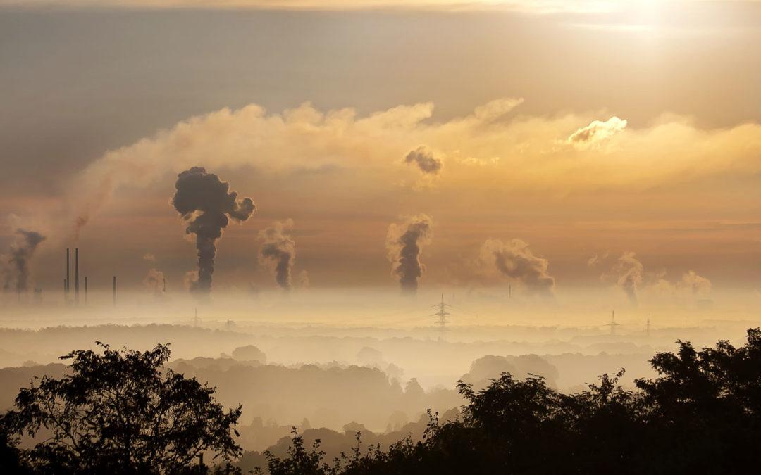 Deutschland spürt die Erderwärmung