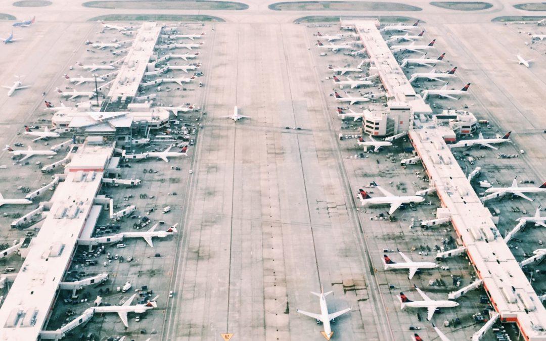 Biokerosin: Algen in den Flugzeug-Tank