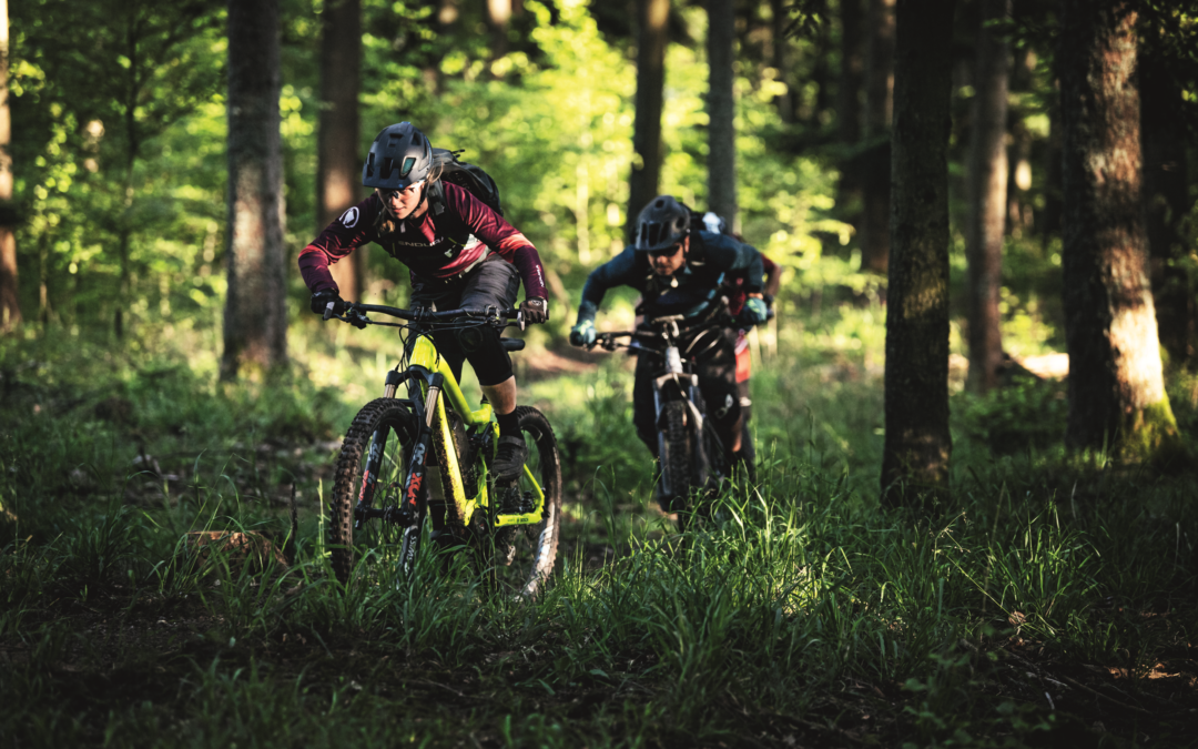 Bosch: das Fahrrad wird digital